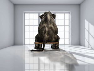 Elephant in the room: the 'customer journey' is being misrepresented.